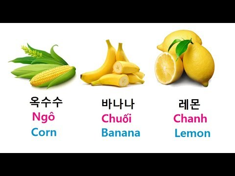 Mách-bạn-phương-pháp-học-từ-vựng-tiếng-Hán-Hàn-hiệu-quả-nhất.